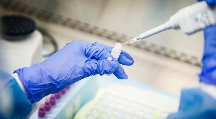 trece-muertos-y-648-nuevos-contagios-de-coronavirus-en-argentina-696x385